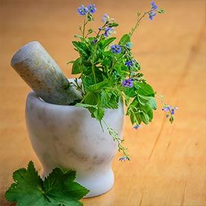 ONKOLO Stiftung – Aromatherapie